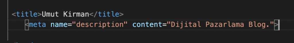 meta-description-kodu